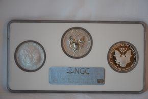 Lot 013 20th Anniversary Silver Eagle Set 2006