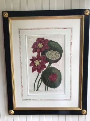Lot 023 Pair of Decorative Floral Prints in Black Frames  ITEM CAN BE PICKED UP IN FOREST HILLS