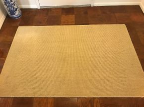 Lot 065 Monaco Sisal Dalyn Rug 3X5 PICK UP IN ROCKVILLE CENTRE