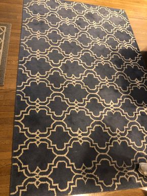 Lot 013 Pottery Barn Area Rug PICK UP IN RVC