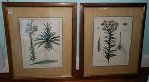 Lot 011 Lot of 2 Framed Bosse Prints Floral 16.5H x 12.25W PICK UP IN MINEOLA,NY